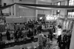 Domenica27NovembrePescara2011-15